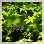 Logo MagicMonday